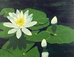 Water Lily- Canvas Design Pattern Pack