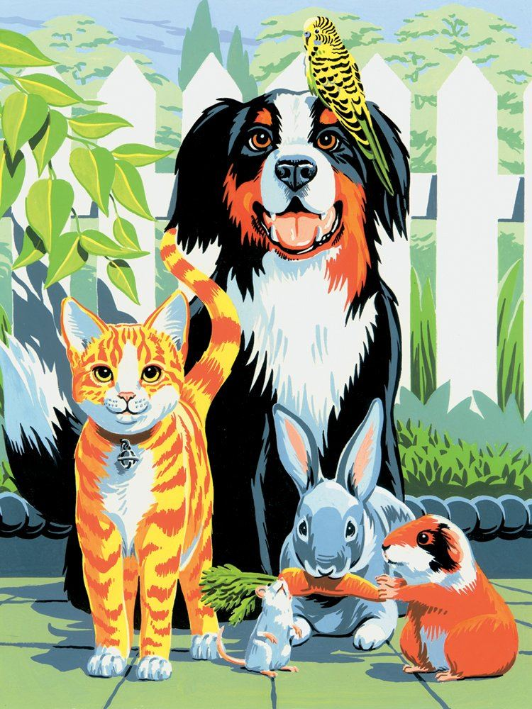 PJS29 Family Pets Painting By Numbers