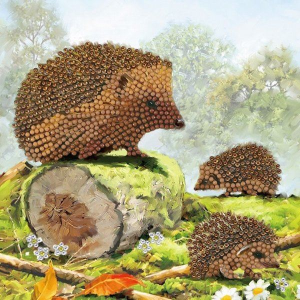 CCK-A69 Happy Hedgehogs Crystal Art Card Kit