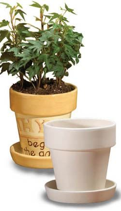 5057 Small Flower Pot and Saucer