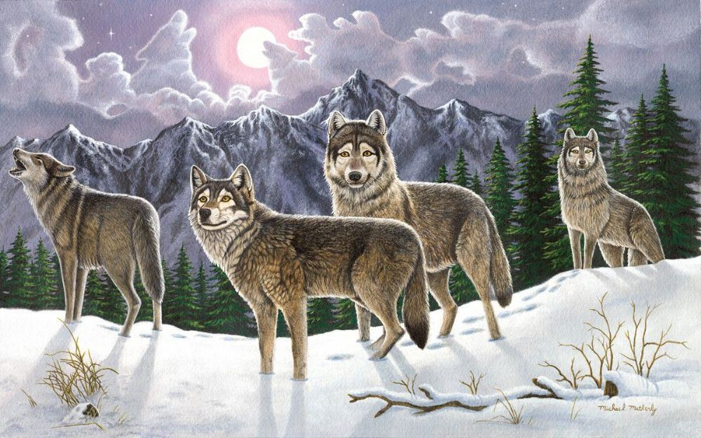 PAL19 Painting by Numbers Kit Wolves picture